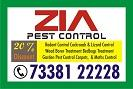 Bangalore Pest Control   1780   Cockroach Service starts from Rs. 999.00 only